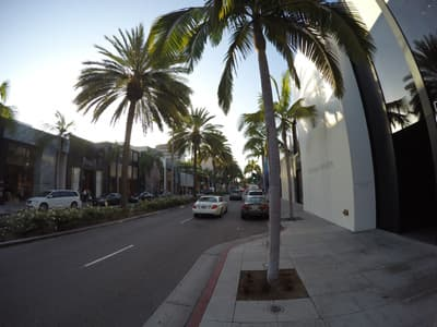 Rodeo Drive in Beverly Hills (USA)